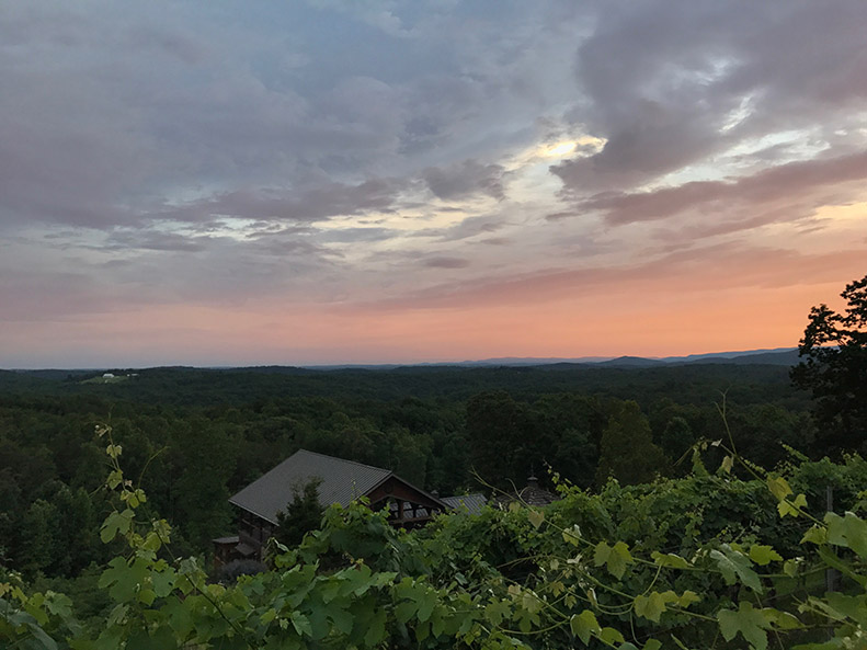 winery-sunset